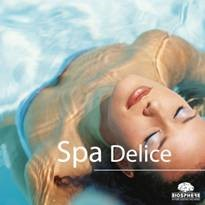 spa delice by beautybizz